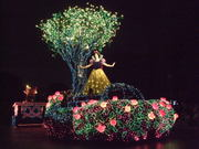 Electrical_parade_5
