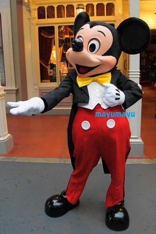 Mickey130101